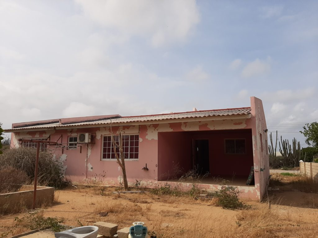 papillon+45+santacruz+house+aruba+fixerupper+family+home+backyard